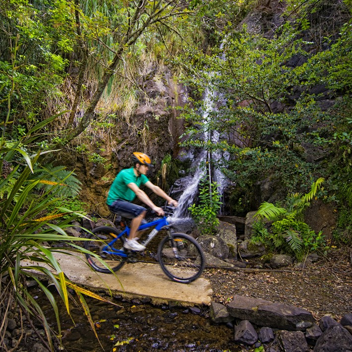 Cycle Trails on Mt Te Aroha, Te Aroha, New Zealand.jpg