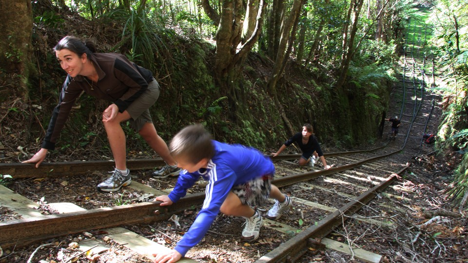 Waiorongomai Valley Walk, Te Aroha, New Zealand