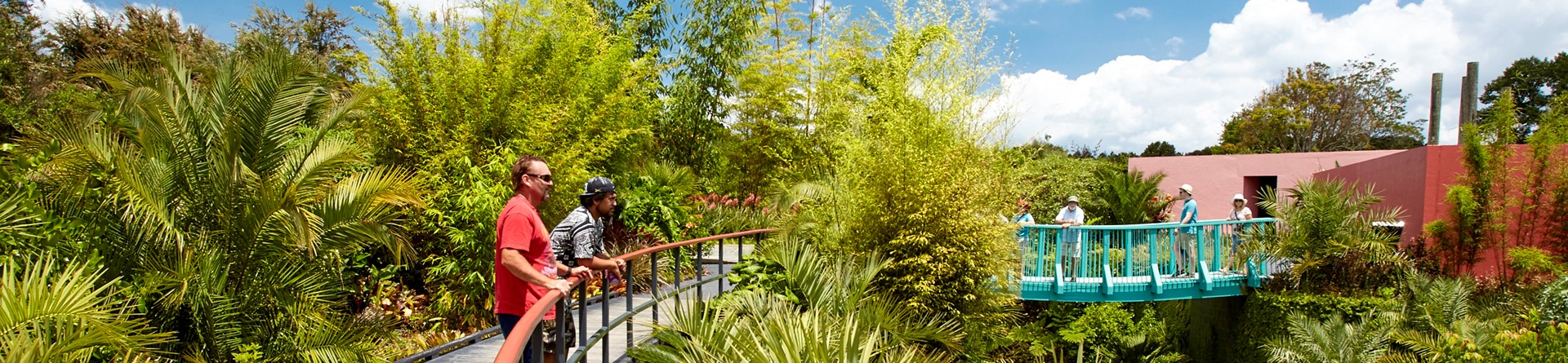 Tropical Garden at Hamilton Gardens, Hamilton, NZ.jpg