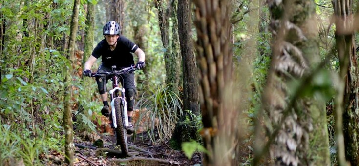 Te Miro Mountain Bike Park, Cambridge, New Zealand