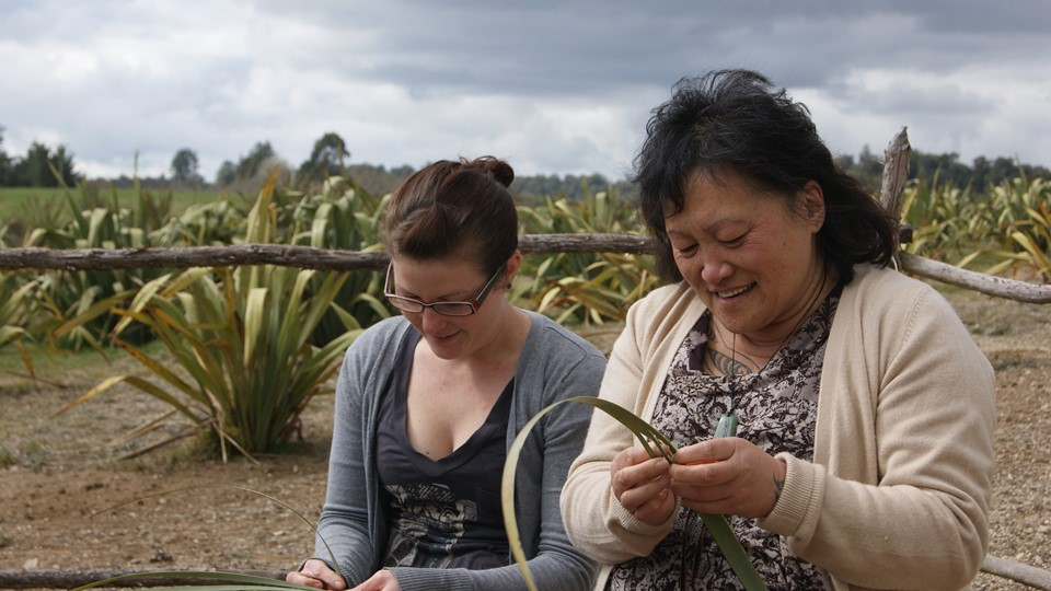 Pa Harakeke flax weaving, Waitomo, New Zealand