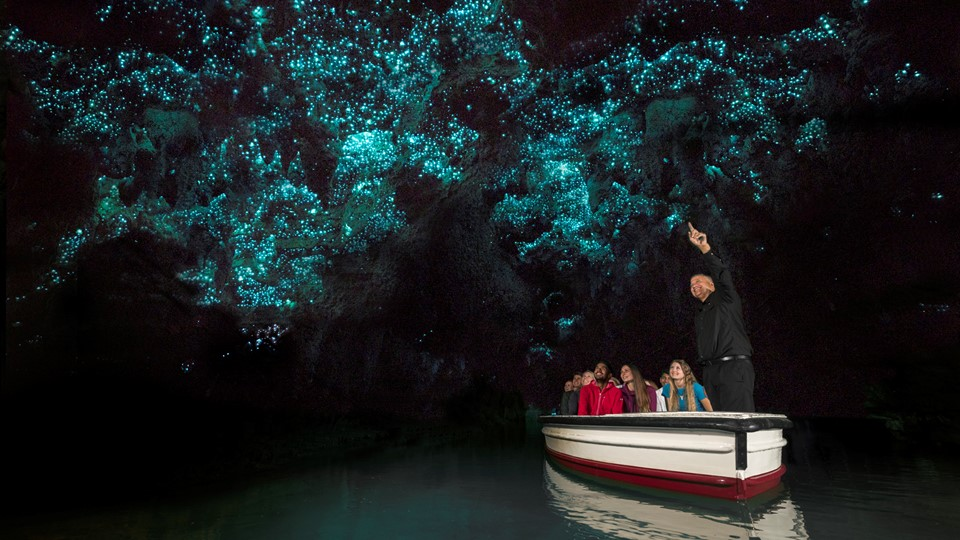 Waitomo Glowworm Caves, Discover Waitomo, New Zealand