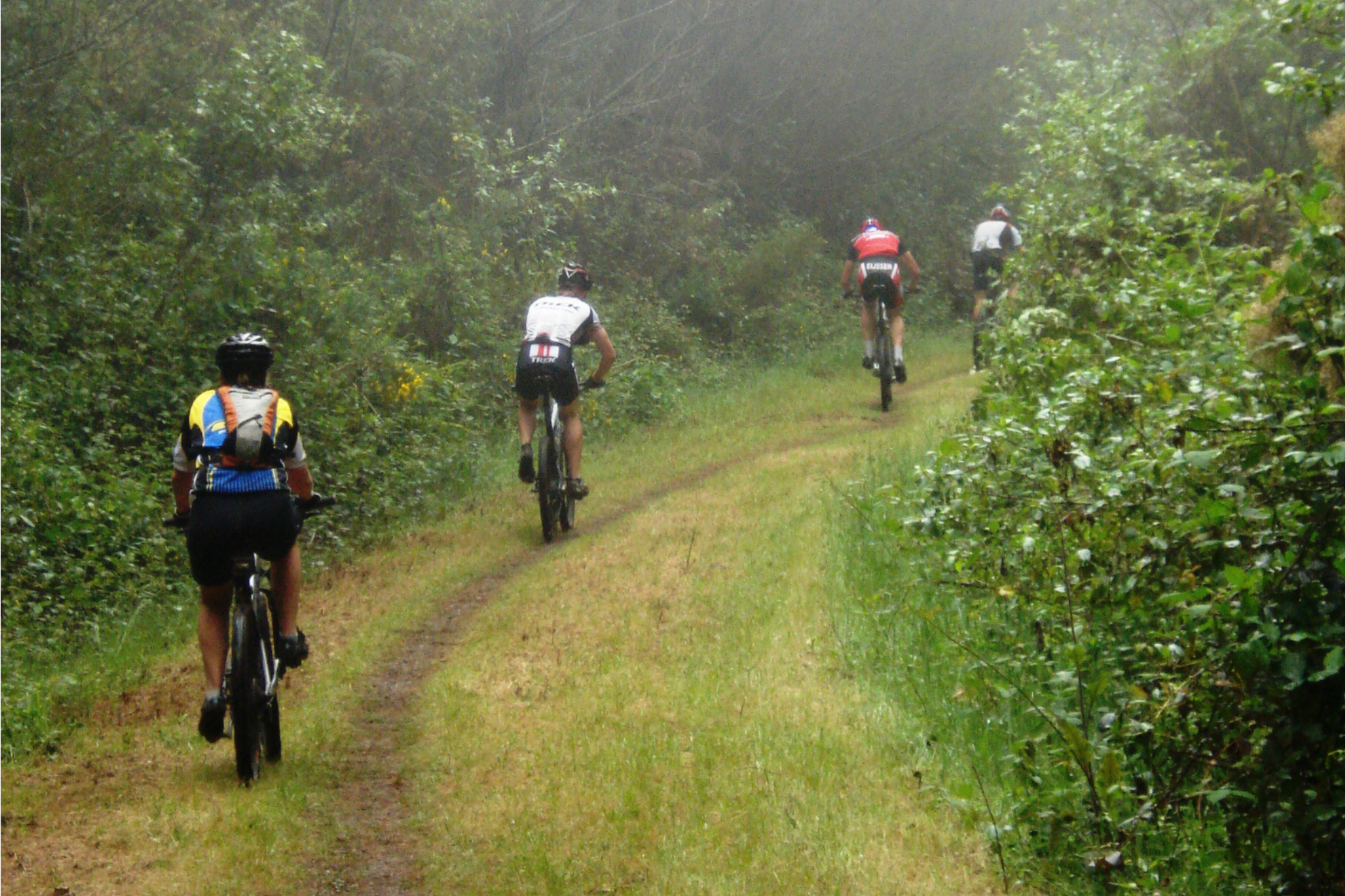 Cougar Mountain Bike Park