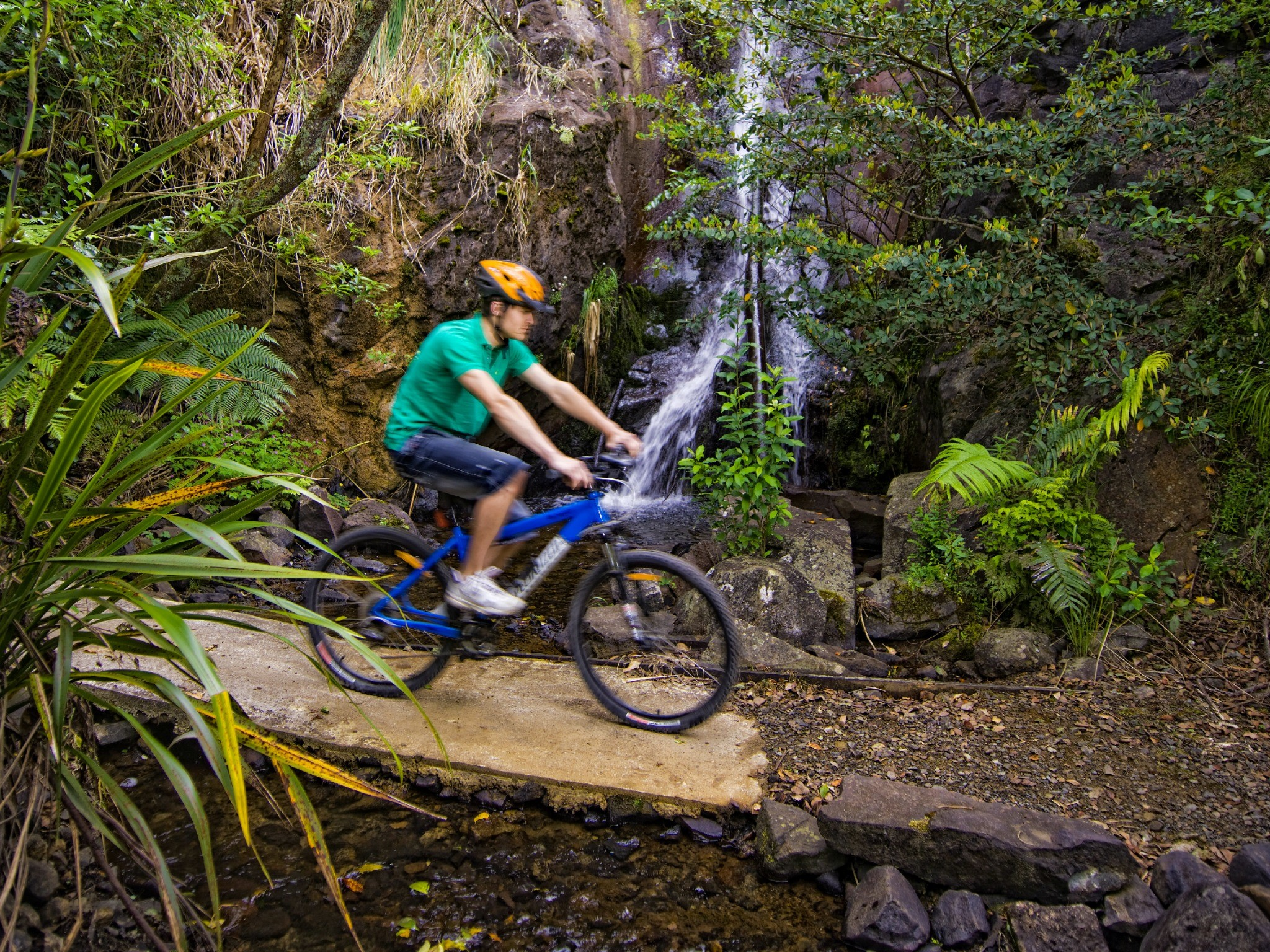 Mt Te Aroha Cycle Trails