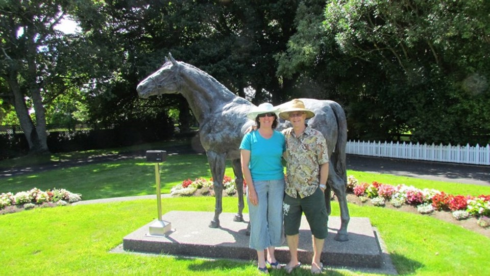 Waikato Thoroughbred Stud Tours.jpg
