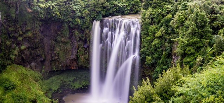 Omaru Falls Walk, Waitomo Caves, NZ