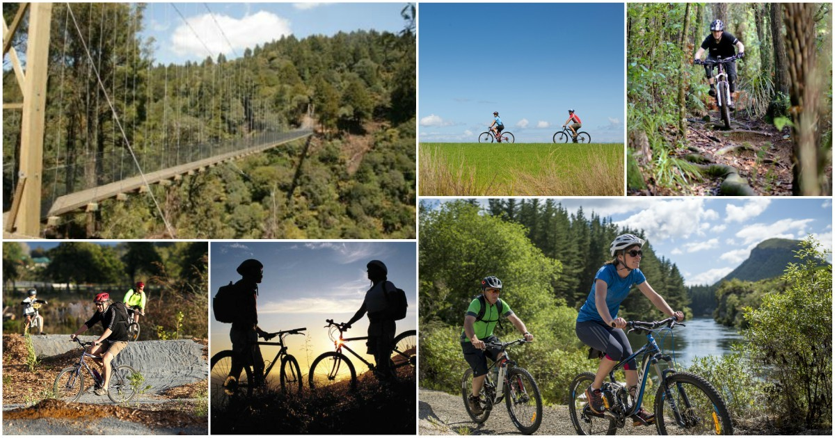 Cycle trails in hamilton waikato cycling for Aroha new zealand cuisine menu