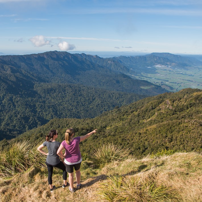 Walking Trails in Hamilton & Waikato