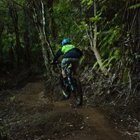 Mt Pirongia Mountainbike Trails, NZ