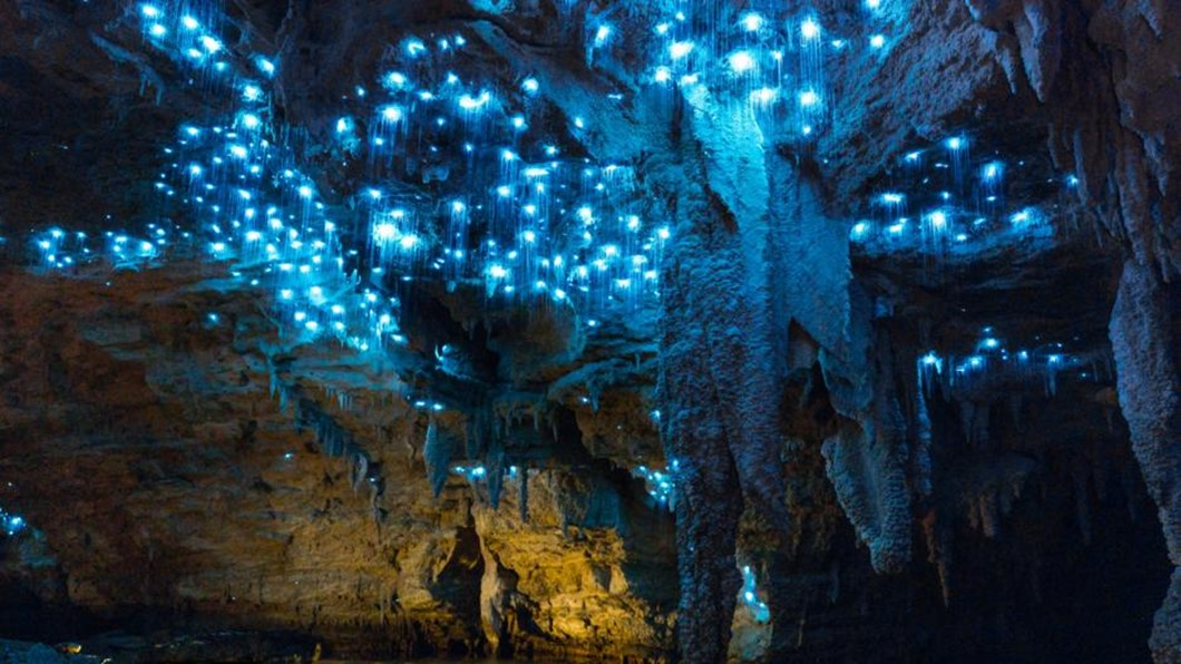 Footwhistle Glowworm Cave Private Tour