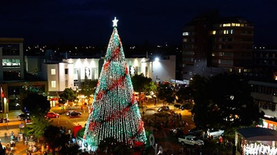 Christmas Tree Lighting Event
