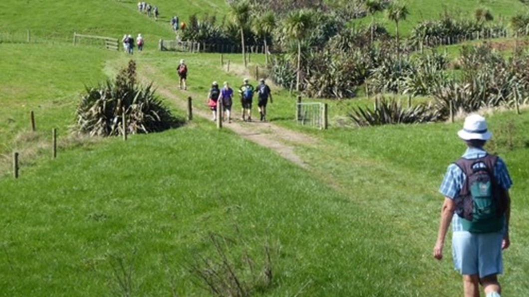 Whitehall Ridge Traverse, Outdoors, Tramping, Whitehall Ridge, Cambridge, Waipa