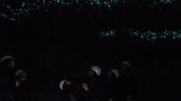 Glowworms in the Lost World