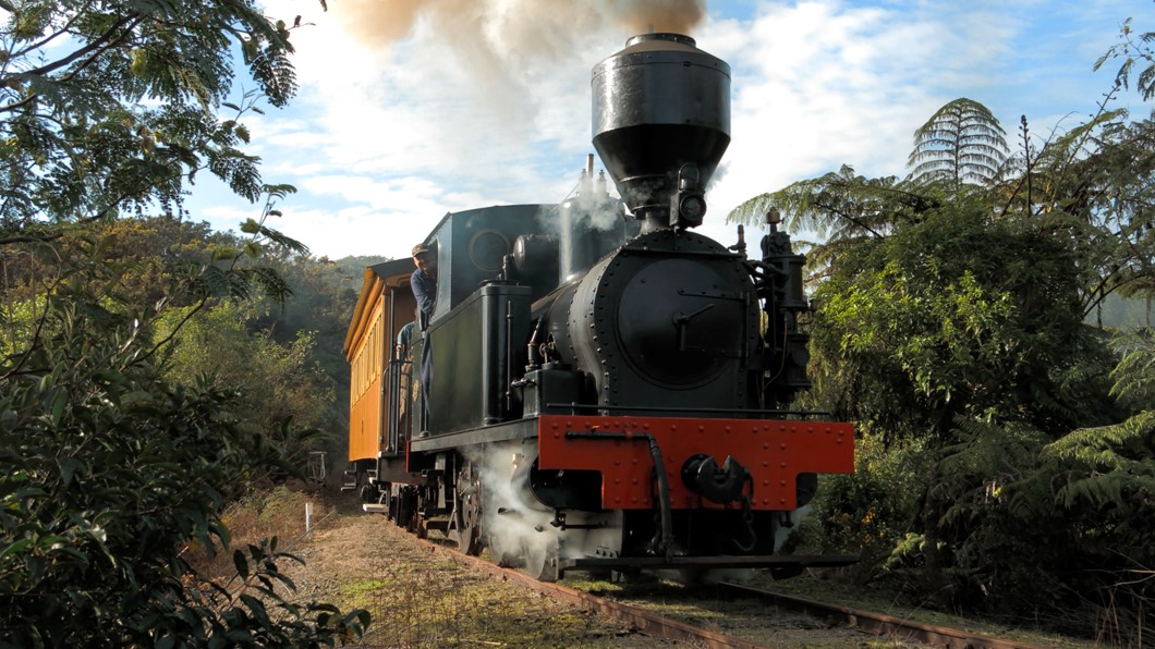 Peckett 1630 steaming through the bush with passengers in tow