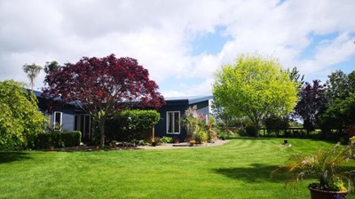 One of many farmstay properties in Waikato area.